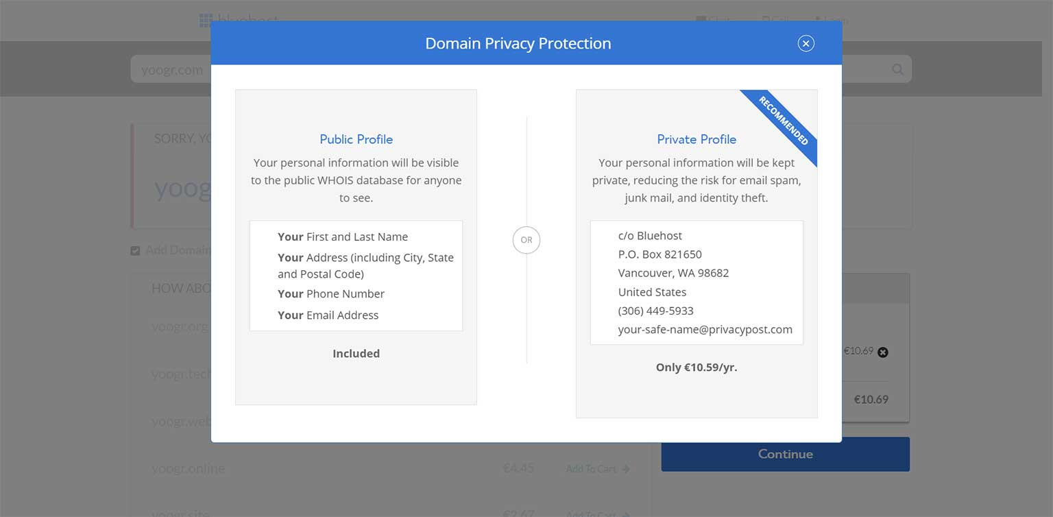 What is domain privacy